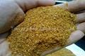 Feed Grade Corn Gluten Meal 60% 5