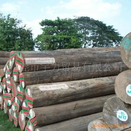 天然耐水耐腐缅甸柚木原材 1