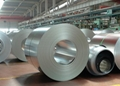 Galvanized Steel Plate&Coil 3