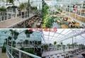 太陽能蔬菜大棚 2