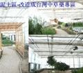 太陽能蔬菜大棚 4