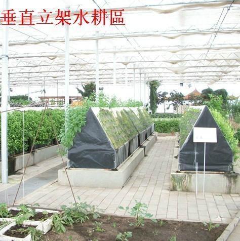 太陽能蔬菜大棚 5