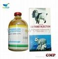 Sulfadiazine + TMP (Trimethoprim)liquid vterinary Injection(40% + 8%)    1