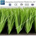 Soccer Artificial Grass 2