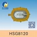HSG8120 / BFC81