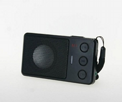 Fm radio tf card portable mini speaker
