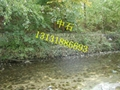 河道護坡格賓石籠 4