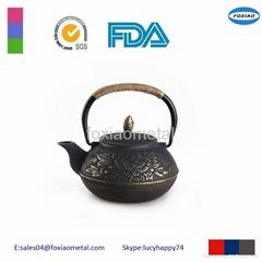 Enameled Cast Iron Teapot