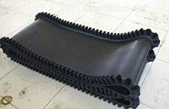 Endless Conveyor Belt