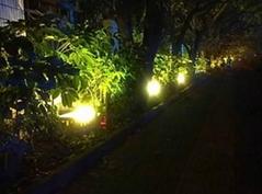 Ultra bright waterproof IP65 LED Floodlight