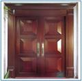 interior hollow core door