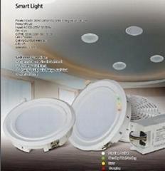 Smart Emergency Light