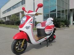 Big Power Electric Motorcycle (TDZ29076Z)