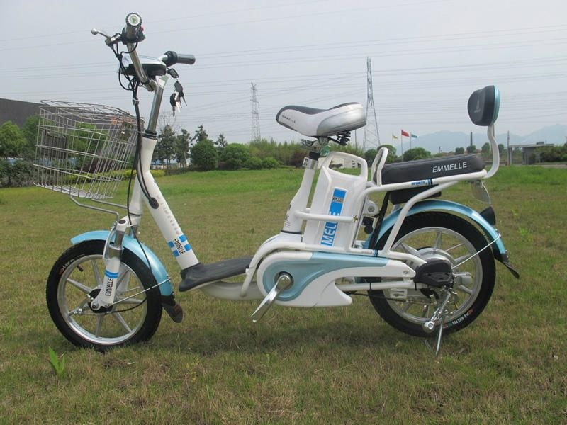 48V Lithium Electric Bicycle (TDR29057Z) 1