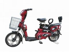 Cheap Electric Cycle (TDR1117Z)