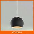 Black iron ball pendant light/lamp