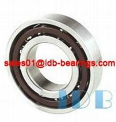 Angular Contact Ball Bearings 7006AC~7026AC