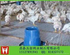 3米寬養雞塑料平網|養殖雛雞塑料網|飼養雛鴨塑料養殖網廠家