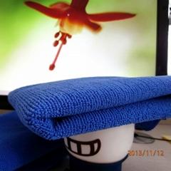 超细纤维 全涤毛巾布面料