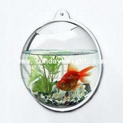 Acrylic Fishbowl & Fish tank