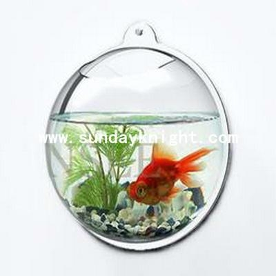 Acrylic Fishbowl & Fish tank 1
