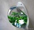 Acrylic fishbowl & fish tank 1