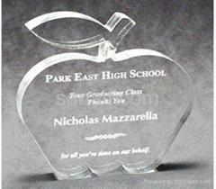 Acrylic awards | trophy