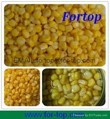 Canned Sweet Corn Kernel in Brine