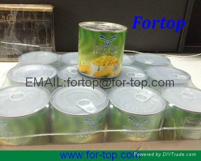 Canned Sweet Corn Kernel in Brine 2