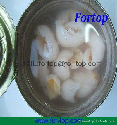 Canned Lychee Whole in Syrup 2