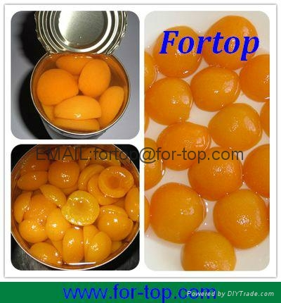 Canned Apricot in Syrup 1