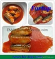 Canned Sardines Fish in Oil 2