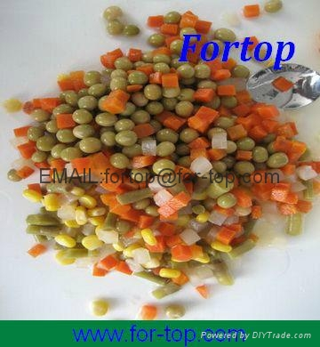 Canned Mix Vegetable in Brine 2