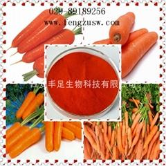 β-胡萝卜素10%