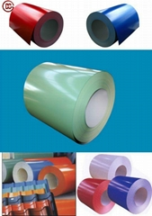 Prepainted galvanized coils