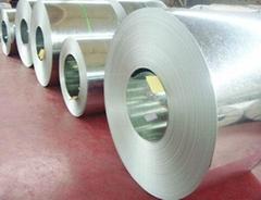 buy galvanized steel coil
