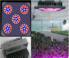LED plant grow light Landscape Lighting IP65 LED Flood Light Floodlight LED red