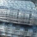 Hot-dipped Galvanized Welded Mesh Roof