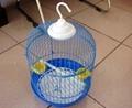 裝飾鳥籠 3