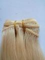 hair weft 2