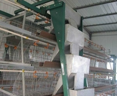 Commercial layer cage & layer chicken cages