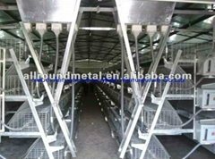 customized chicken layer broiler cage for sale