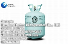 Green Recyclable Cylinder R134a Refrigerant 30 LB Freon Gas