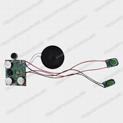 Greeting Cards Sound Module
