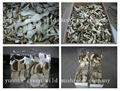 Hot sale dried sliced boletus edulis 2