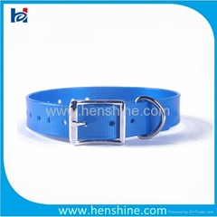 blaze blue nylon belt buckle dog collar