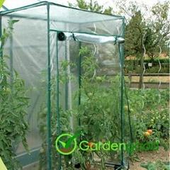 Tomato PVC Greenhouse