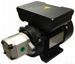 單相0.42KW配HGP-1A油泵電機