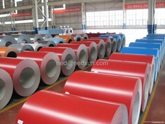 High quality good price prepainted steel coil from China