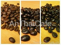 Arabica roasted cofee beans